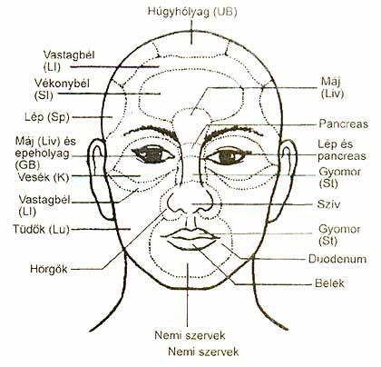 arcdiagnosztika6