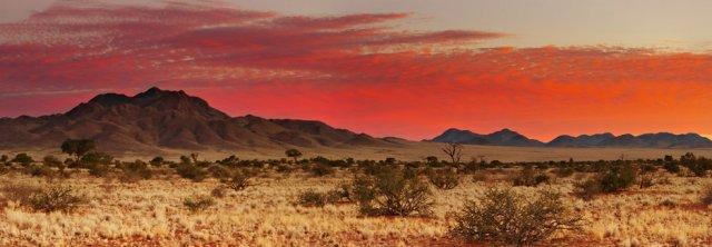 Kalahári sivatag
