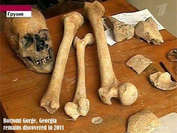 Örményországban, Hoth falu egyik kriptájában találták ezeket a csontvázmaradványokat.