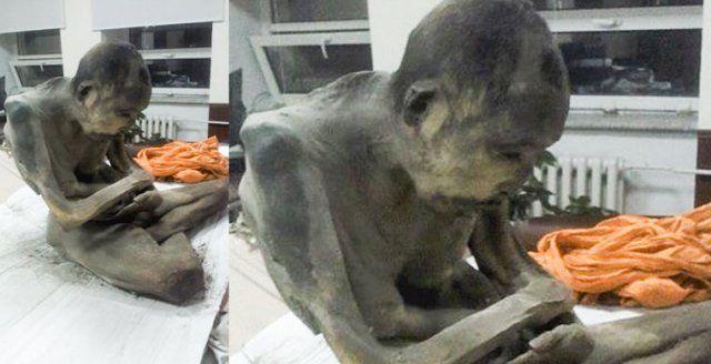 """A """"meditáló múmiát"""" január 27-én fedezték fel Mongóliában."""