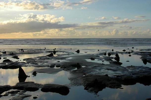 Borth Beach (Wales) elmerült történelem előtti erdője. Kristi Herbert/Flickr