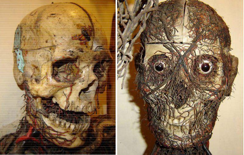 A bal oldali képen látható, hogy a koponya úgy lett felnyitva, hogy koponyaüregben található véredények komplex hálózata megfigyelhető. A jobb oldali képen egy véredényekkel borított női koponya külső felszíne látható.