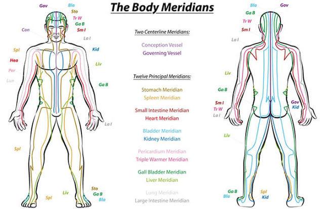 A gyógyászati hagyományok mindegyike beszél energiavezetékekről, senekről, meridiánokról vagy nadikról.