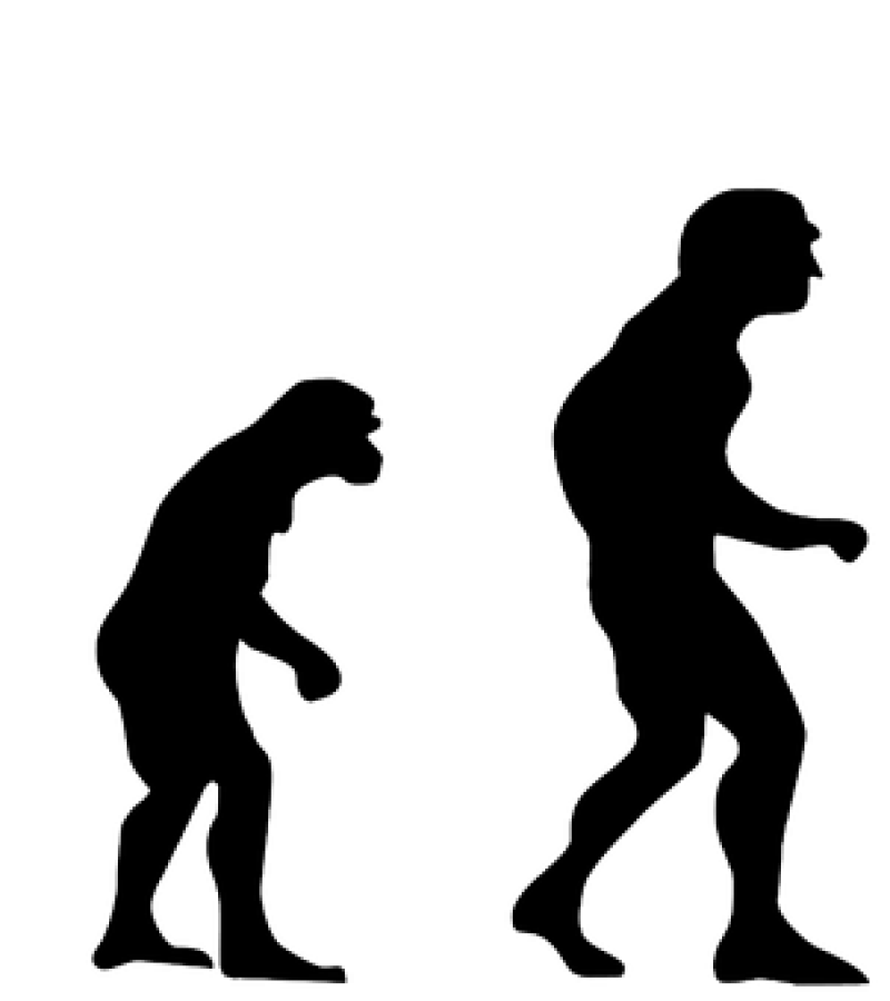 Az ősember és a modern ember fejlődése: újítások és pusztulások