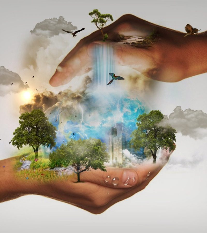 Ki a felelős az életemért? Életünk tudatos és öntudatlan teremtések eredménye?